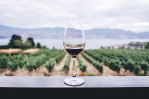 Ideal Wine holiday destination glass by field