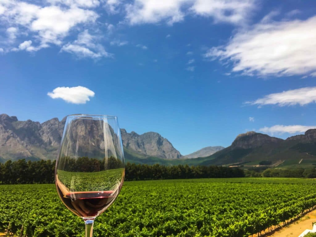 ideal wine company - South African wines